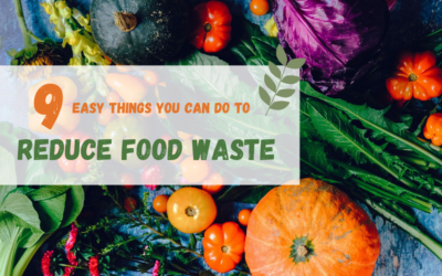 9 Easy Things You Can Do To Reduce Food Waste